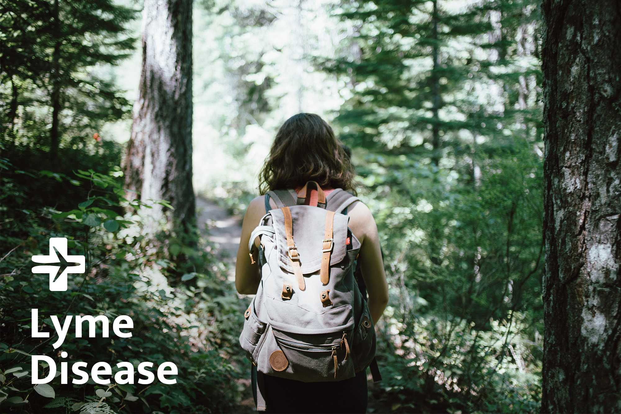 Lyme disease - Prevention, Symptom, Treatment - travel clinic TravelSafe