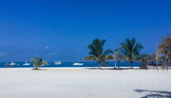 Destination-Zanzibar-cover