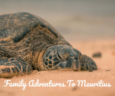 Family-Adventures-To-Mauritius