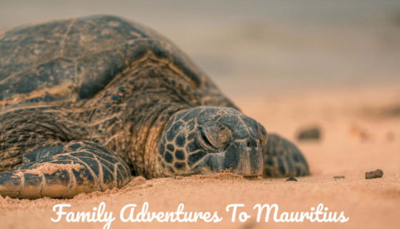 Family-Adventures-To-Mauritius