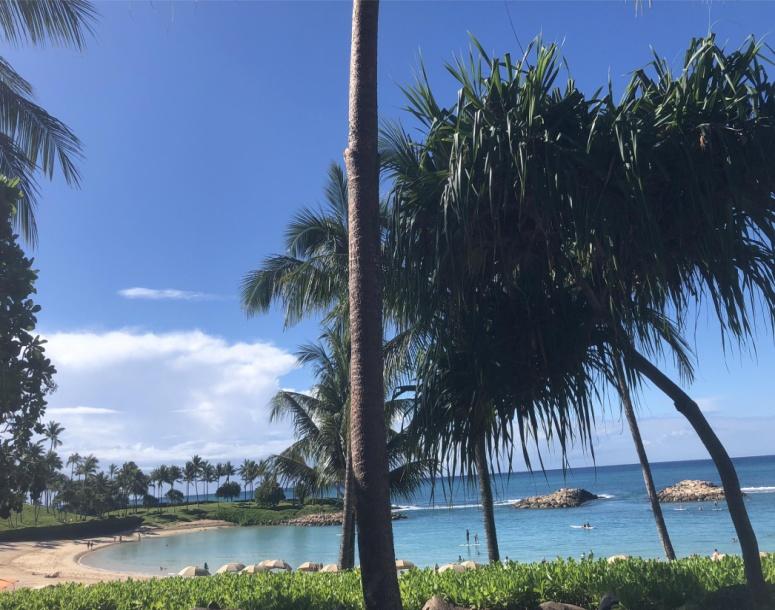 Family trip Maui - by Gioya
