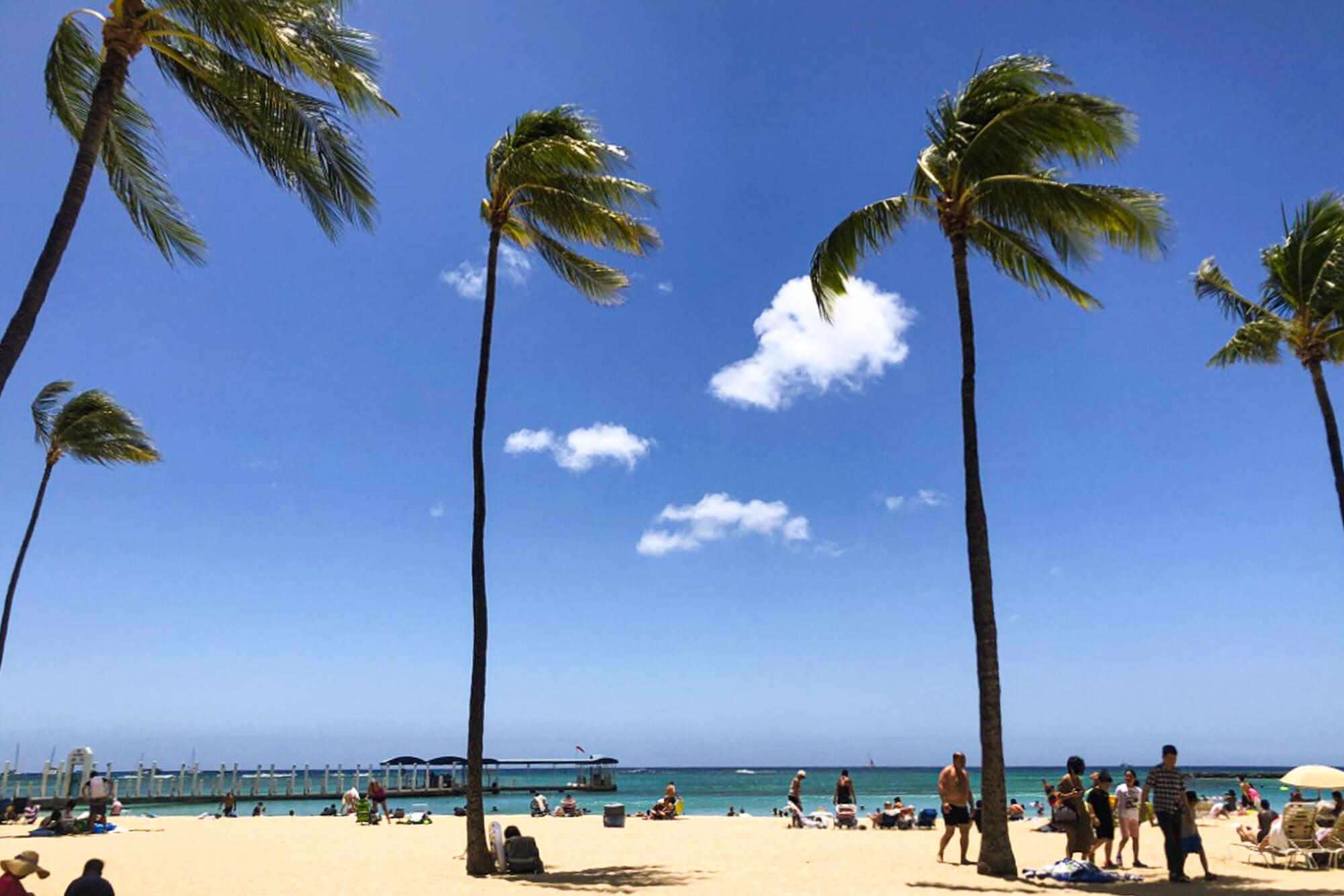 family trip to hawaii